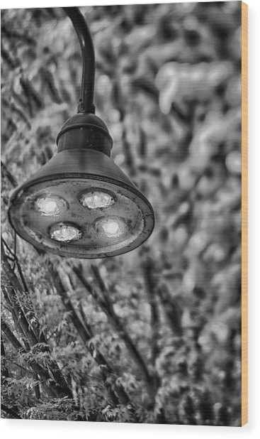 Lights In Town Wood Print