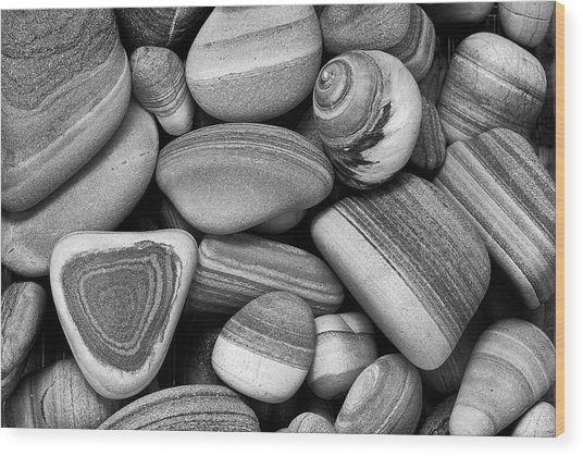 Lined Rocks And Shell Wood Print