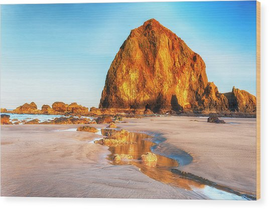 Wood Print featuring the photograph Liquid Gold Path At Low Tide by Dee Browning