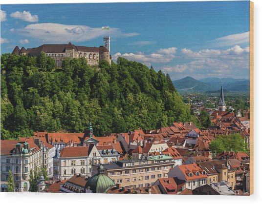 Ljubljana Slovenia Wood Print by Keith Mcinnes Photography