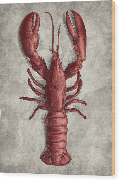 Wood Print featuring the drawing Lobster by Clint Hansen