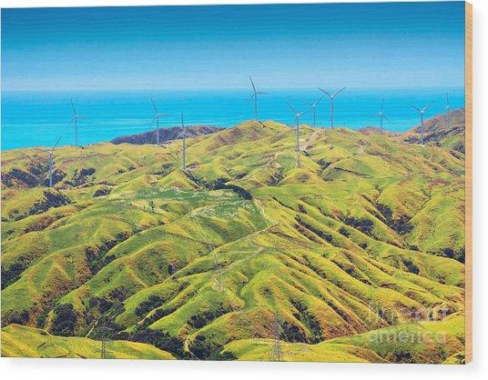 Location New Zealand, Capital City Wood Print
