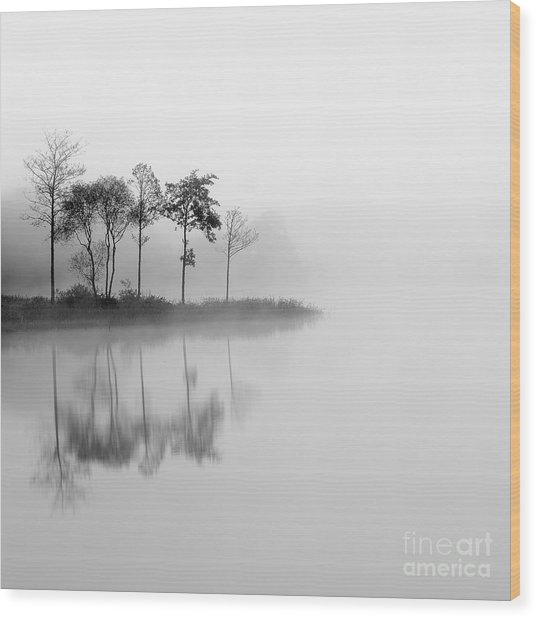 Loch Ard Trees In The Mist Reflecting Wood Print