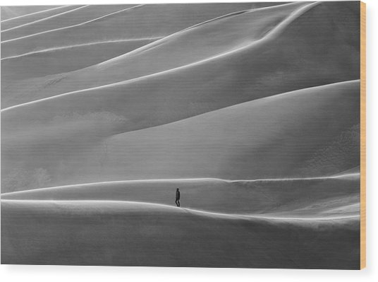 Wood Print featuring the photograph Lone Sand Trekker by Rand