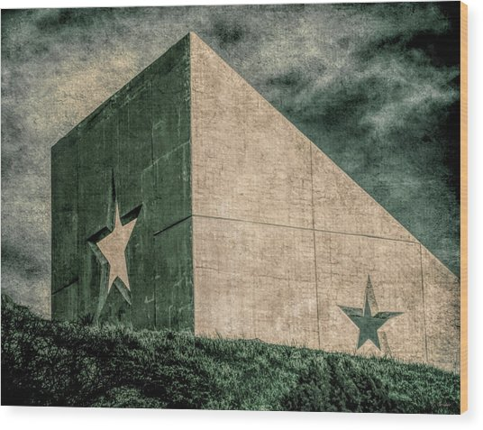 Lone Star  Wood Print by Tony Grider
