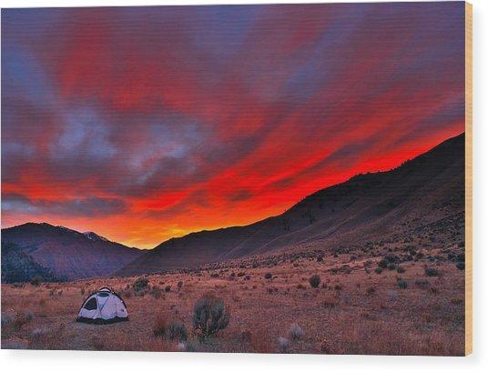 Lone Tent Wood Print