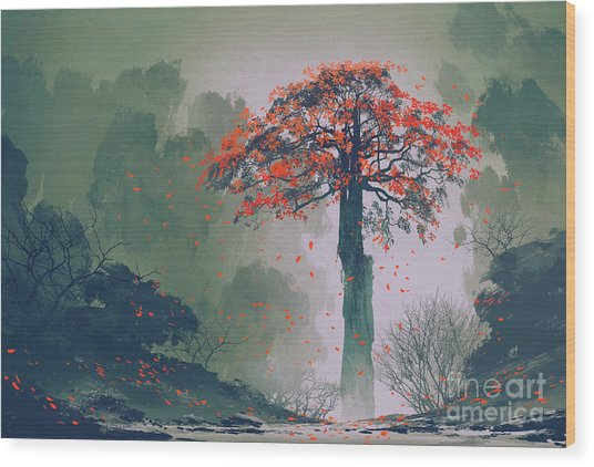 Lonely Red Autumn Tree With Falling Wood Print by Tithi Luadthong