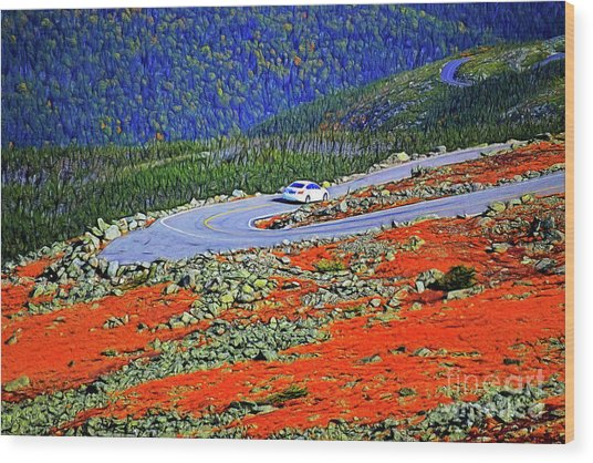 Wood Print featuring the photograph Long And Winding Road by Patti Whitten