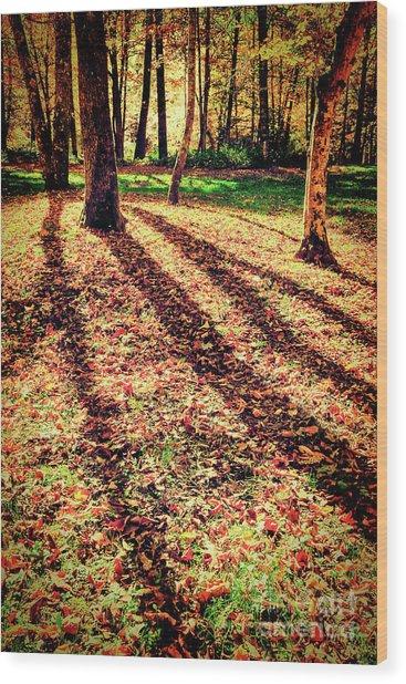 Long Autumn Shadows In The Blue Ridge Wood Print by Dan Carmichael