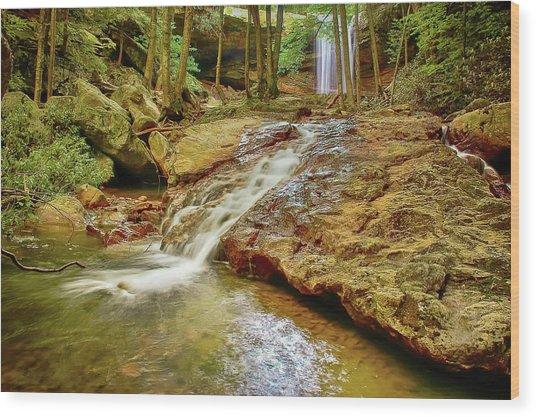Long Falls Wood Print
