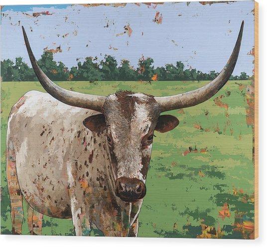 Longhorns #1 Wood Print