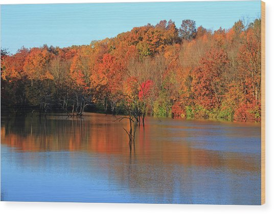 Wood Print featuring the photograph Looking Out Over Alum Creek by Angela Murdock