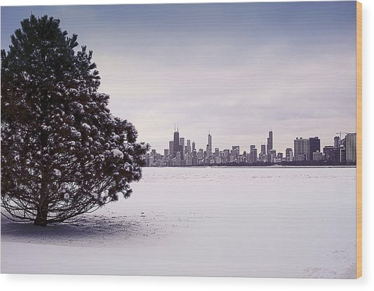 Wood Print featuring the photograph Lovely Winter Chicago by Milena Ilieva