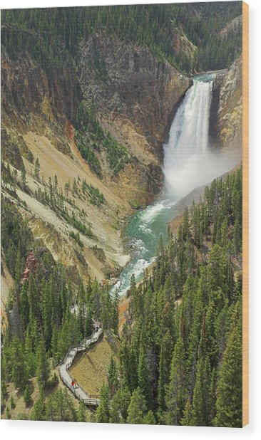 Lower Falls On The Yellowstone River Wood Print by Neale Clark / Robertharding