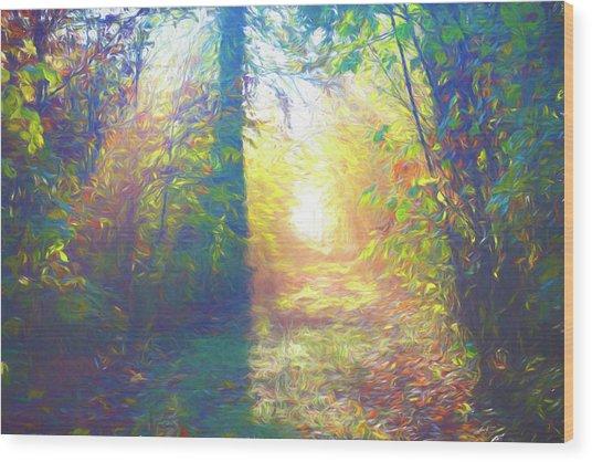 Lower Sabie Wood Print