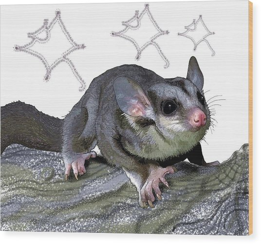 M Is For Mahogany Glider Wood Print
