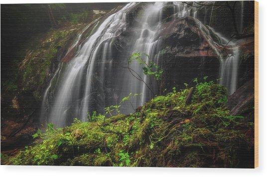 Magical Mystical Mossy Waterfall Wood Print