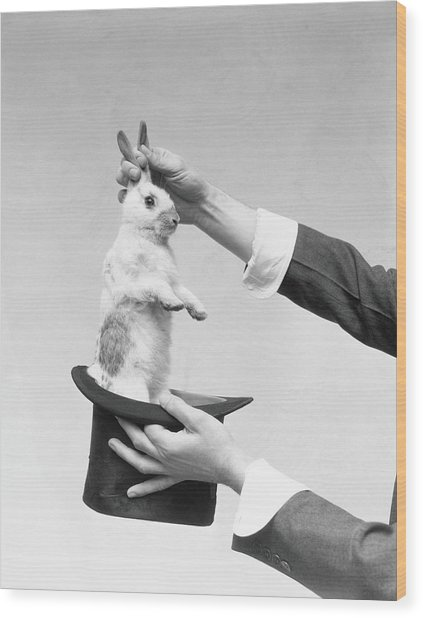 Magician Pulling Rabbit Out Of Hat Wood Print by H. Armstrong Roberts
