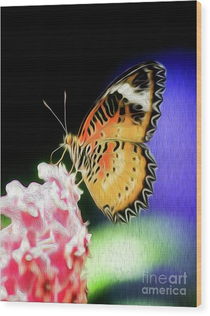 Malay Lacewing Butterfly I Wood Print