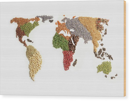 Map Of World Made Of Various Seeds Wood Print by Imagemore Co, Ltd.