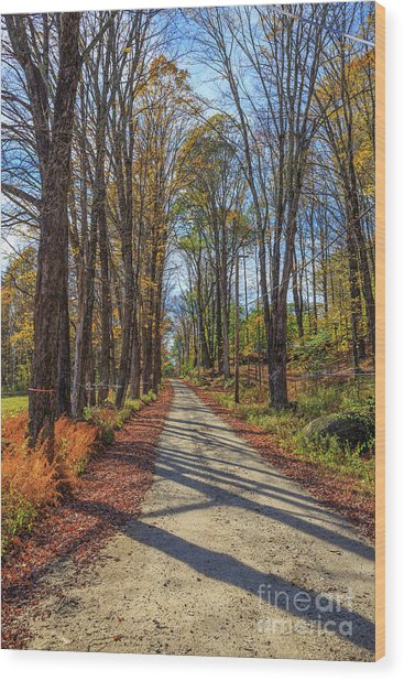 Maple Lane Old Fairgrounds Road Nh Wood Print