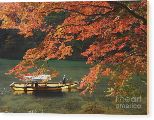 Maple Tree And River Wood Print
