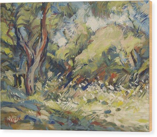 Marmari Olive Orchard Paxos Wood Print