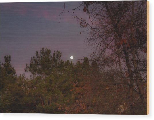 Marvelous Moonrise Wood Print