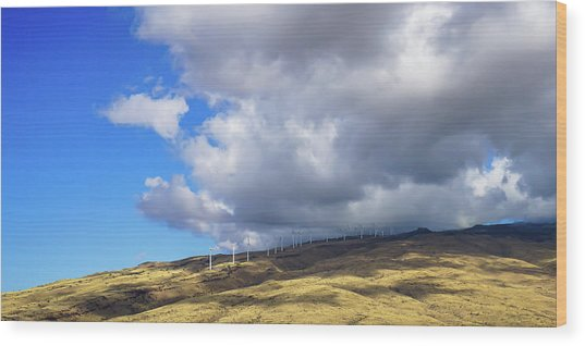 Maui Windmills Wood Print