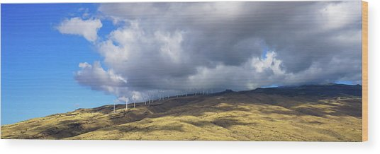 Maui Windmills Wide Wood Print