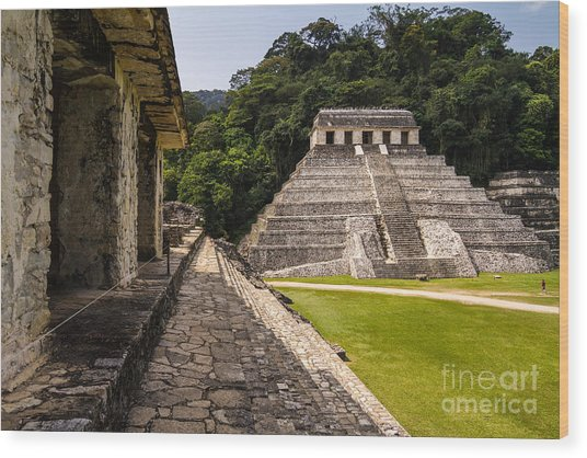 Mayan Ruins In Palenque, Chiapas Wood Print