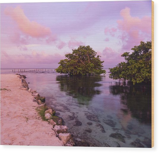 Mayan Sea Reflection Wood Print