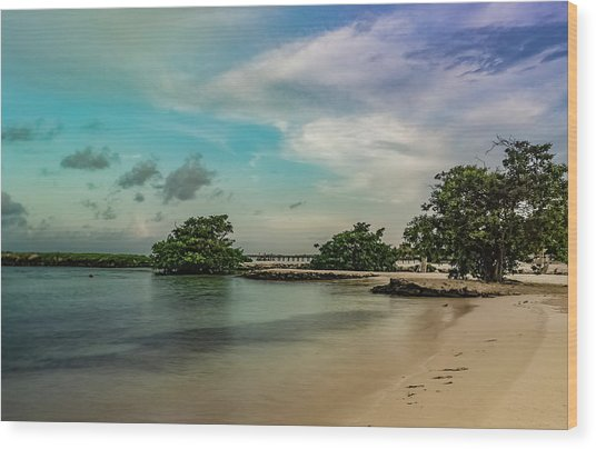 Mayan Shore 2 Wood Print