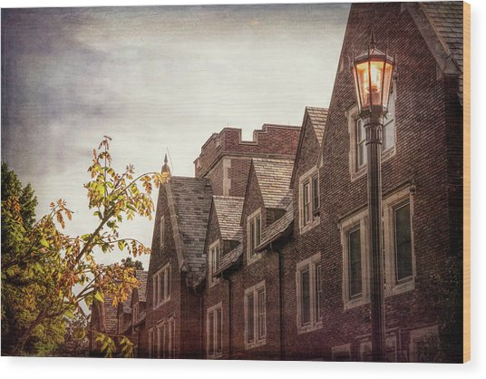 Mayslake Historic Home Wood Print