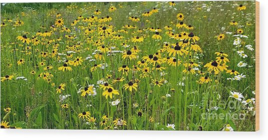 Meadow Flowers 1 Wood Print