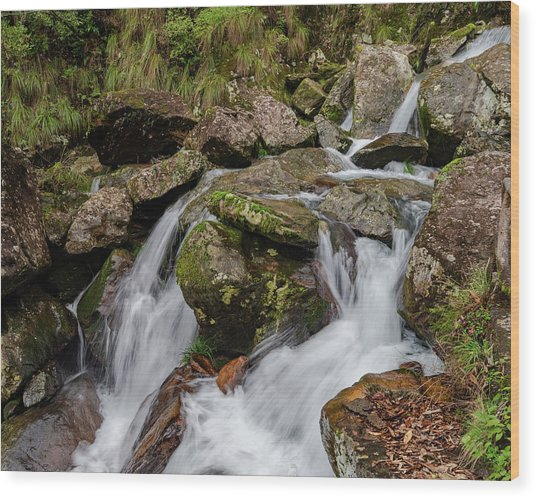 Wood Print featuring the photograph Medium Cascade by William Dickman
