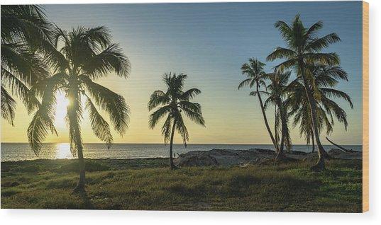 Mexico Palm Tree Sunrise Wood Print
