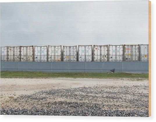 Miami Topographics 15 Wood Print