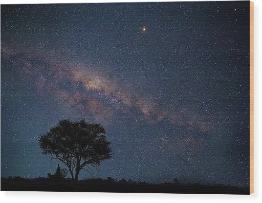 Milky Way Over Africa Wood Print