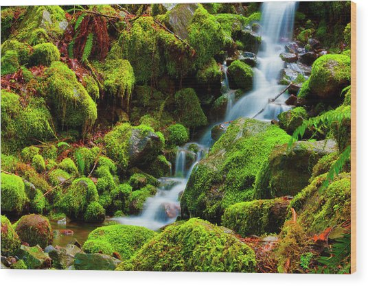 Wood Print featuring the photograph Mini Cascading Waters by Dee Browning