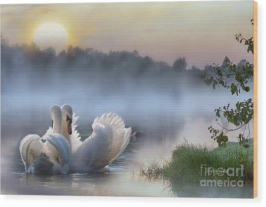 Misty Swan Lake Wood Print