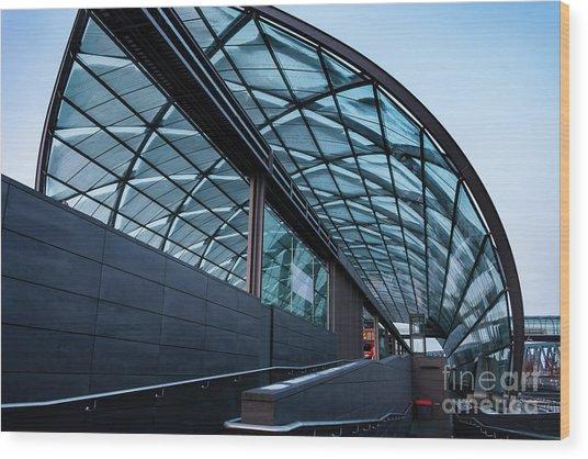 Modern Architecture Shell Wood Print