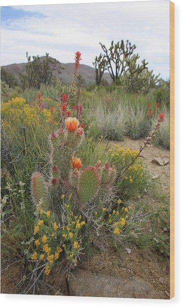 Mojave Spring Wood Print by Robin Street-Morris