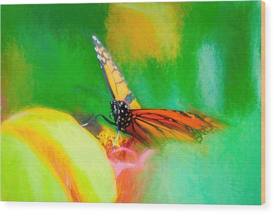 Monarch Butterfly Beautiful Smudge Wood Print