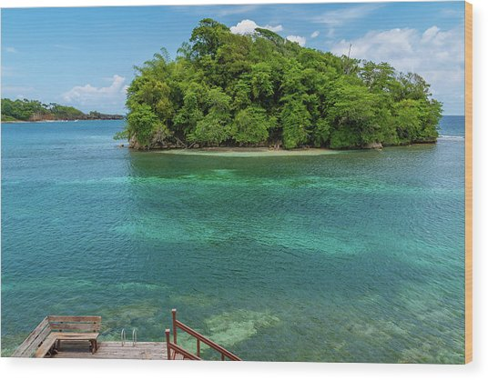 Monkey Island In Portland Jamaica Wood Print