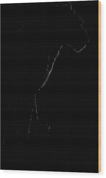 Monochrome Leopard Outline Wood Print