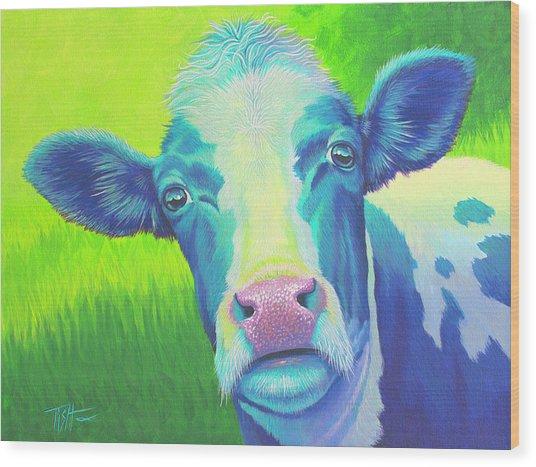 Moo Now Blue Cow Wood Print