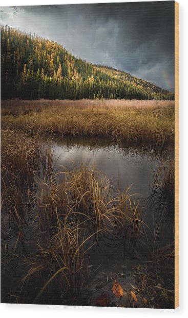 Moody Skies And Rainbows / Whitefish, Montana  Wood Print