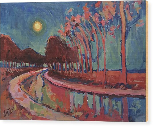 Moon Night At The Canal Wood Print