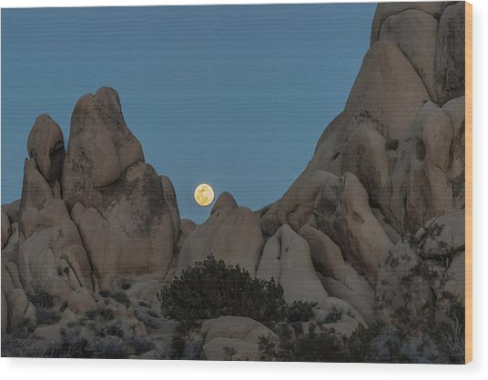 Moonrise In The Sight Wood Print